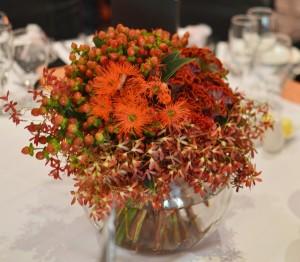 Coral fishbowl
